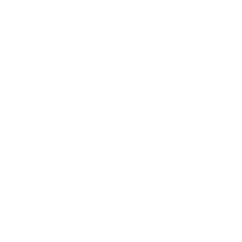 Newsletter en